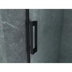 Aloni niche door sliding door black matt 8 mm (BXH) 1400 x 2000 mm - CR-045A14 - 4